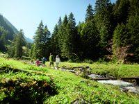 Sommerurlaub im Zillertal: Facettenreich wie wir!